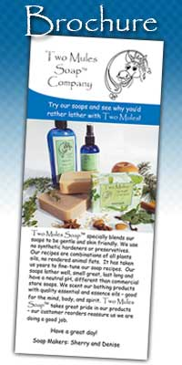 Handmade Soap and Skin Care Products Brochure